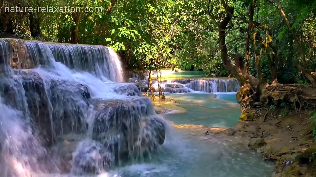 Tropical Island Beach Ambience Sound: Waterfall & Jungle Sounds 2 Relaxing Tropical Rainforest