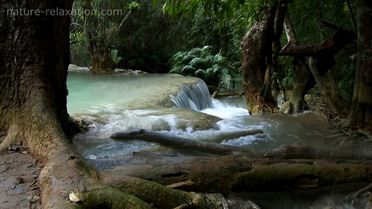 Tropical Island Beach Ambience Sound: Waterfall & Jungle Sounds 4 Relaxing Tropical Rainforest